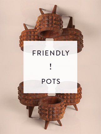 FRIENDLY POTS 1