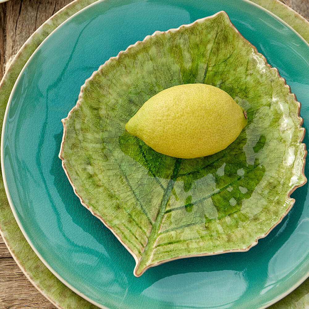 Riviera-hydrangea-leaf-set-4