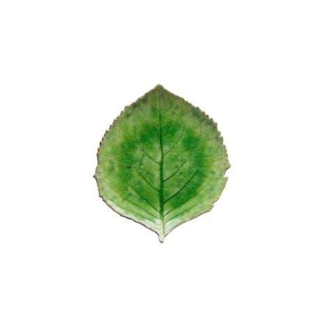 Riviera Hydrangea Leaf Set