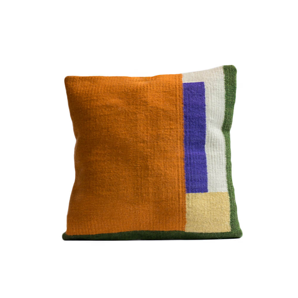 Bird-of-paradise-II-pillow-cover-1.