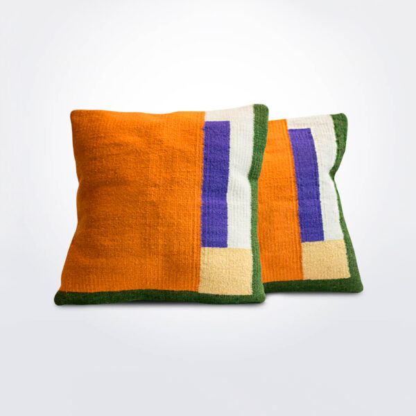 Bird of paradise II pillow cover set of two pieces.