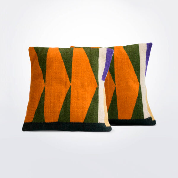Bird of paradise pillow cover set of two pieces.