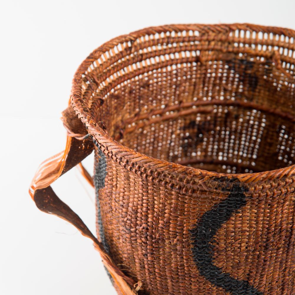 Wii-amazonian-basket-small-iii-2