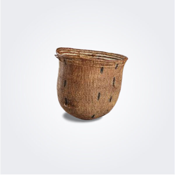 Wii Amazonian basket product picture.