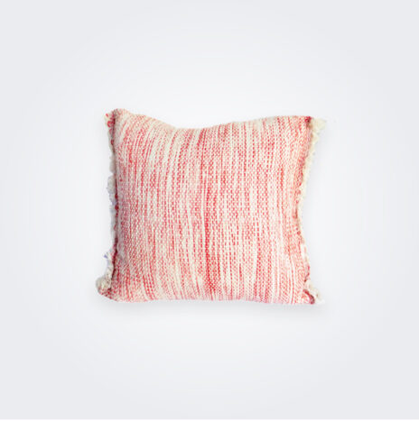 Salmon Serenity Pillow Cover