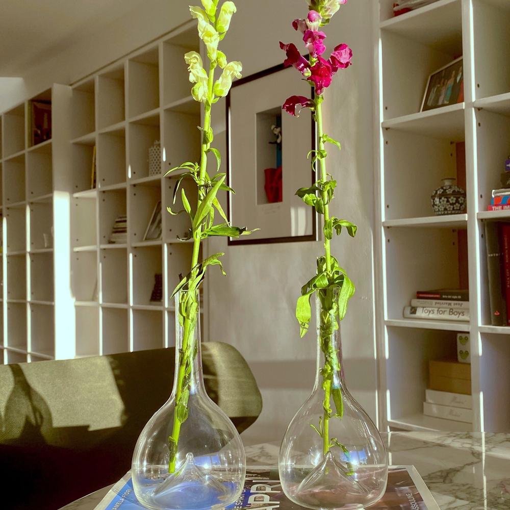Single-Flower-Glass-Vase-007