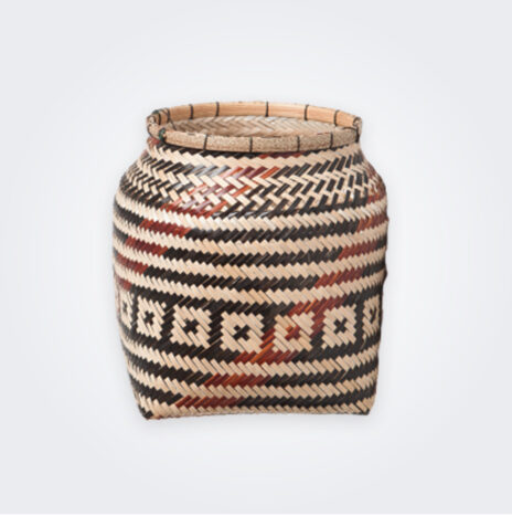 Tribal Amazonian Basket I