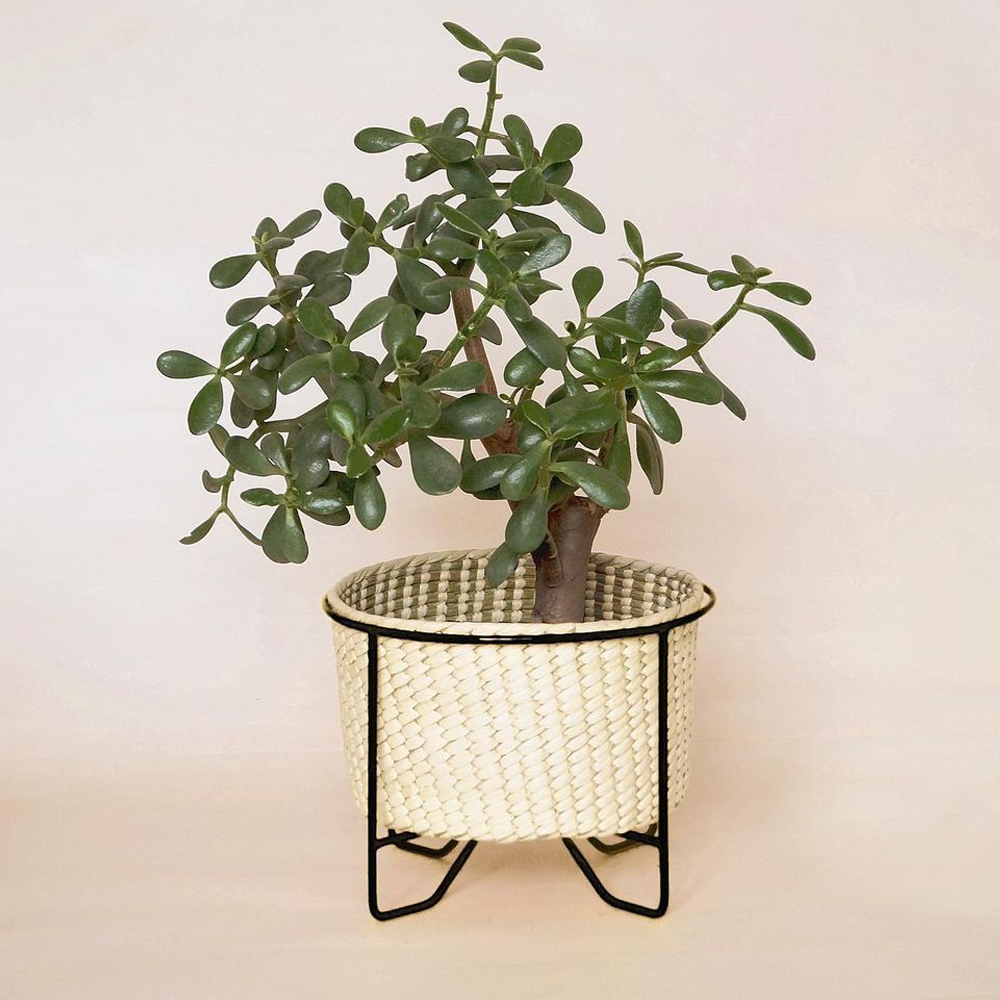Small palm leaf basket with black stand context